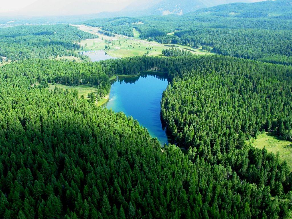 over-black-lake